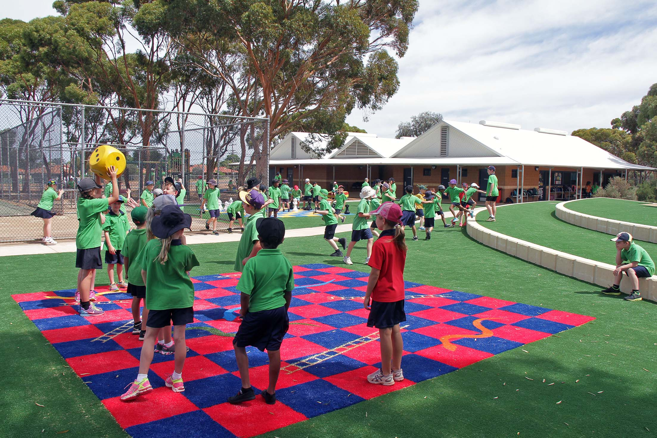 Christopher Hicks, Kalgoorlie-Boulder, Synthetic Turf pitctured at Hannans Primary School.